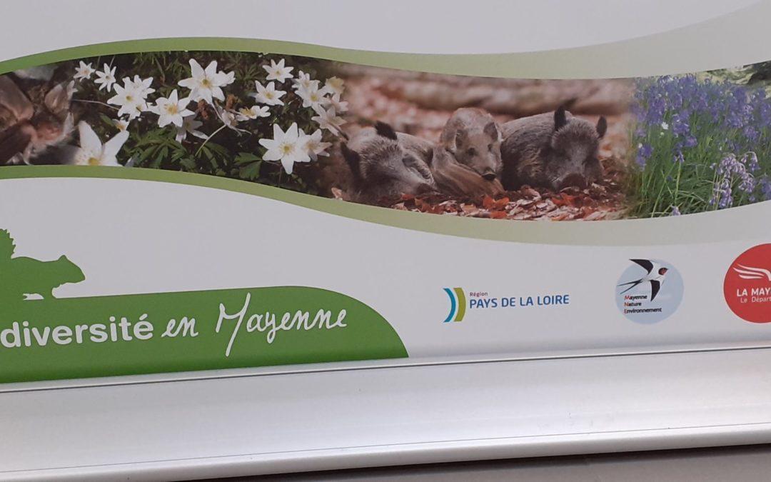 Exposition Biodiversité de la Mayenne
